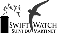 swiftwatchlogo
