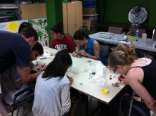 More sorting, summer field season 2013