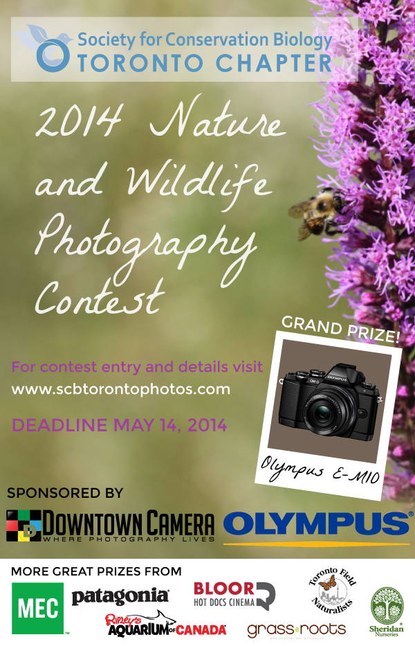 SCB-TO Photo Contest April 14th to May 14th 2014